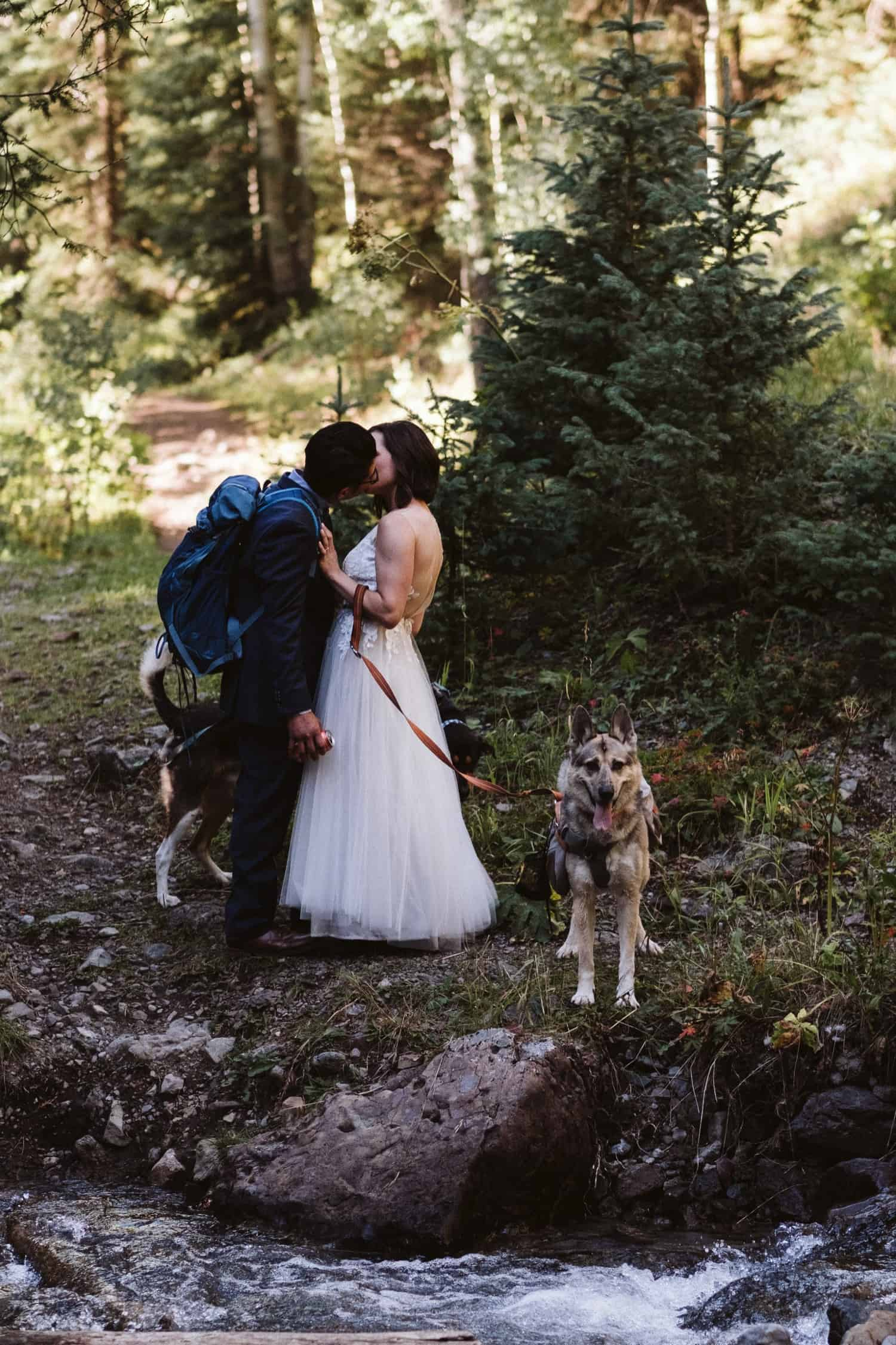 telluride-hiking-elopement-with-dogs
